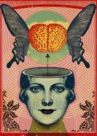 Monarch Mind Programming